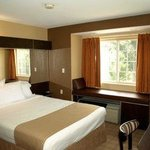 Foto di Microtel Inn & Suites by Wyndham Scott/Lafayette