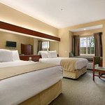 Microtel Inn & Suites by Wyndham Bentonville