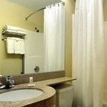 Φωτογραφία: Microtel Inn & Suites by Wyndham Albertville