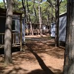 Photo de Spina Camping Village
