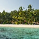 Vilamendhoo Island Resort & Spa resmi