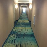 SpringHill Suites Las Vegas North Speedway의 사진
