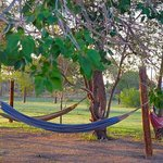 Hammocks everywhere at El Cosmico