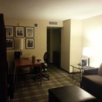 Embassy Suites Hotel Chicago Downtown Lakefront Foto