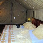 Photo of Olduvai Camp