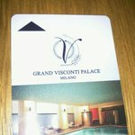 Bild från Grand Visconti Palace
