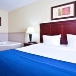 Holiday Inn Express Hotel & Suites Waukeganの写真