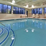 Bilde fra Holiday Inn Express Hotel & Suites Detroit-Novi