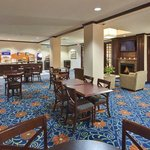 Holiday Inn Express Hotel & Suites Detroit-Novi resmi