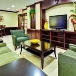 Photo de Holiday Inn Express Hotel & Suites Byram