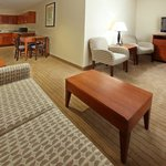 Φωτογραφία: Holiday Inn Express Hotel & Suites Searcy