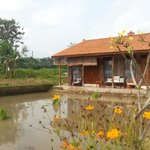 Foto Alamanda Bed & Breakfast