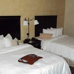 Hampton Inn & Suites Dallas-Arlington Northの写真
