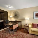Embassy Suites Atlanta-Kennesaw Town Centerの写真