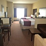 BEST WESTERN PLUS Mansfield Inn & Suitesの写真