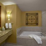 Hilton Garden Inn Atlanta West/Lithia Springsの写真