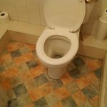 dated and grubby toilet
