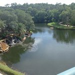 Bilde fra Sawgrass Marriott Golf Resort & Spa