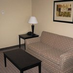 Holiday Inn Express Hotel & Suites Shelbyville - Indianapolisの写真