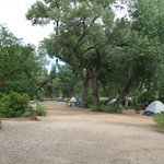 campground view, full campground