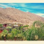 Bilde fra Palm Canyon Resort & Spa