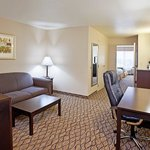 Foto di Holiday Inn Express & Suites Columbus East