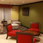 Foto de Holiday Inn Express Hotel & Suites Detroit North - Troy
