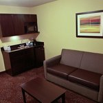 Φωτογραφία: Holiday Inn Express Hotel & Suites Detroit North - Troy