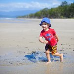 Koala Beach Resort Daintreeの写真