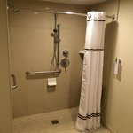 Disability access shower
