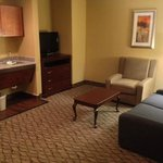 Foto van Holiday Inn Express Houston-Downtown Convention Center