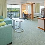SpringHill Suites by Marriott Chattanooga Downtown/Cameron Harborの写真