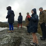 Foto di Peppers Cradle Mountain Lodge