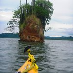 Bahia Rica Kayak and Fishing Lodge의 사진