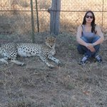 Hanging with one of the Cheetahs (Floppy?) that roam the grounds freely.