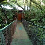 Monteverde Hostel Lodgeの写真