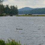 Adirondack Hotel on Long Lakeの写真