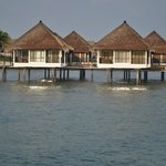 Φωτογραφία: AVANI Sepang Goldcoast Resort