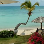 Photo de Blue Waters Antigua