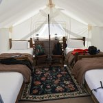 Yellowstone Under Canvas resmi