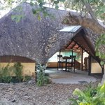 Foto de Ndhovu Safari Lodge