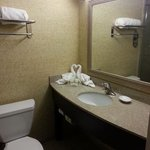 Φωτογραφία: Holiday Inn Nashville-Vanderbilt (Downtown)