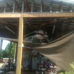 Outdoor dining added with inverted plane and Clemson Tiger Paws on wings.  Propeller spins like