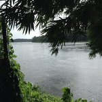 the river Periyar at the Kudanadu elephant training camp (a short drive away)