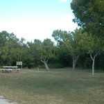 Part of camping area