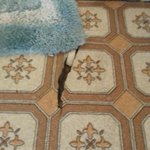 Torn linoleum with rotten subfloor