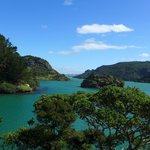Deepest Natural Harbor in New Zealand, hike behind the Lodge