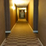 The hallway to the room