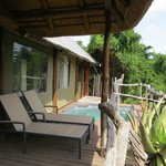 Foto van Shamwari Game Reserve Lodges