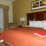 Φωτογραφία: Country Inn & Suites Texarkana